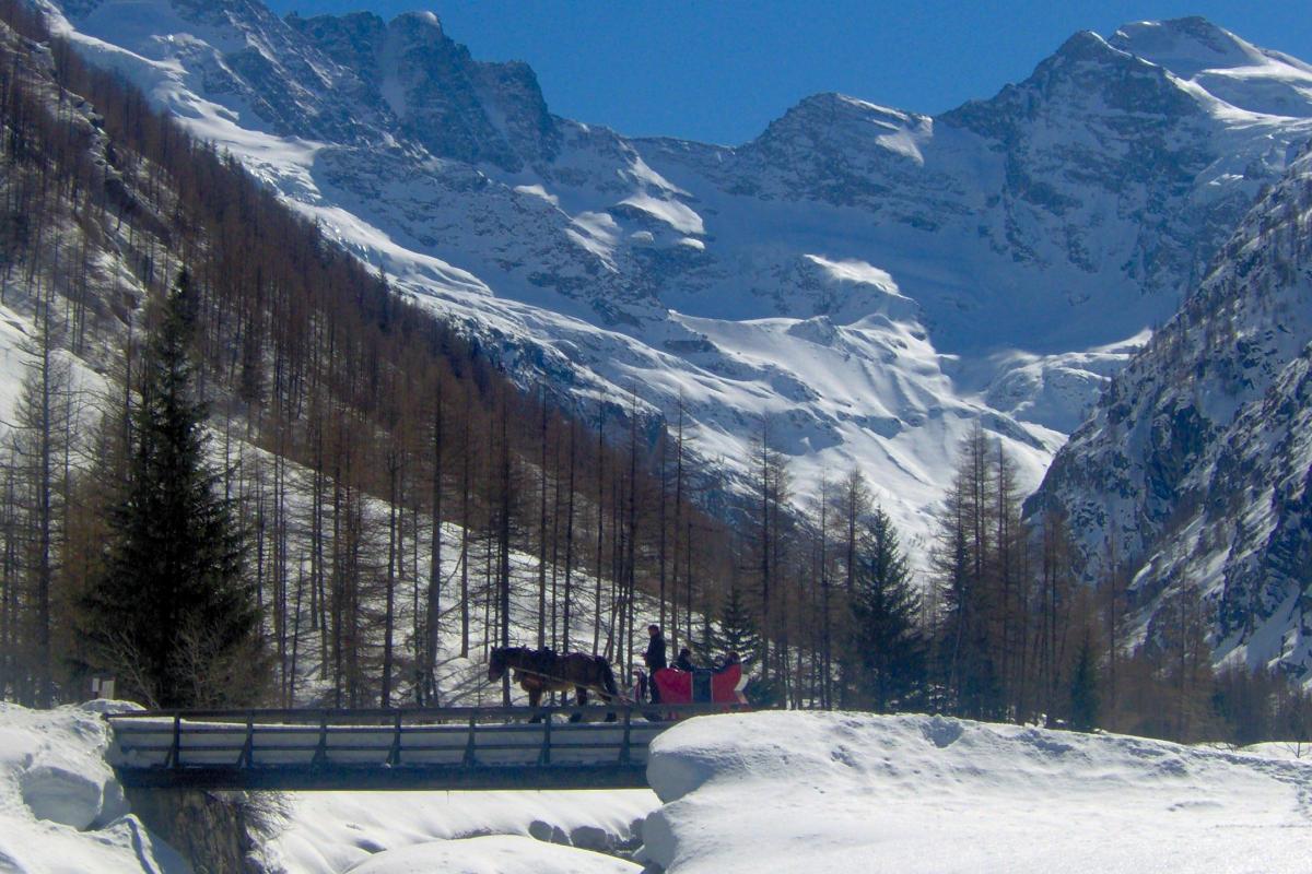 Passeggiata in calesse Inverno